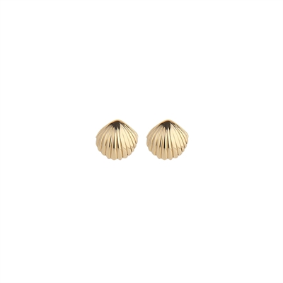 Seashell callop Ear Studs